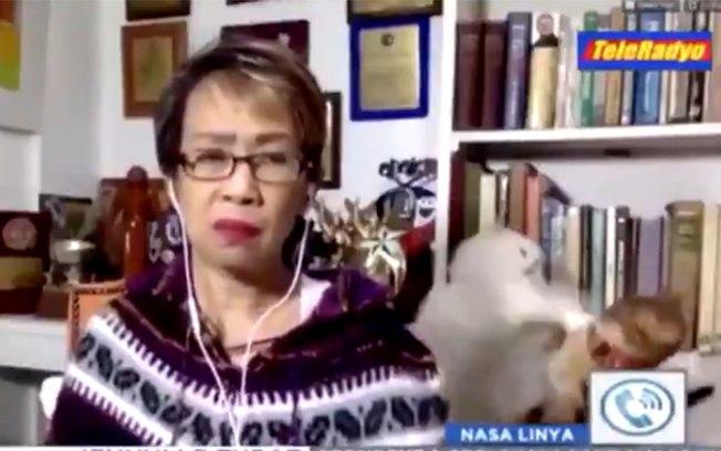 Jornalista e gatos brigando ao fundo